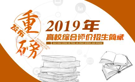 2019年高校综合评价招生简章